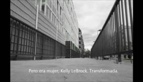 Videopoemas: Ferrer Lerín